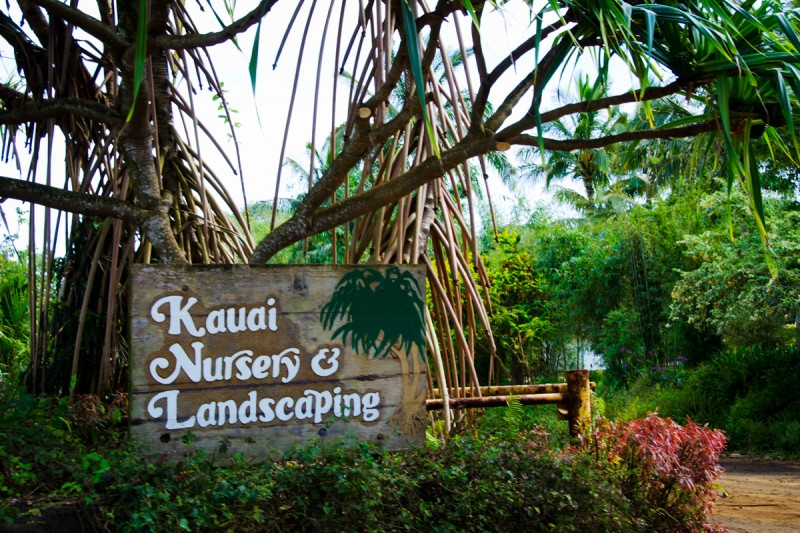 Kauai Nursery Landscaping Inc
